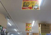ぽかぽかな週末に!お買物は♪いかがでしょう(^o^)ラジコンコーナー!!